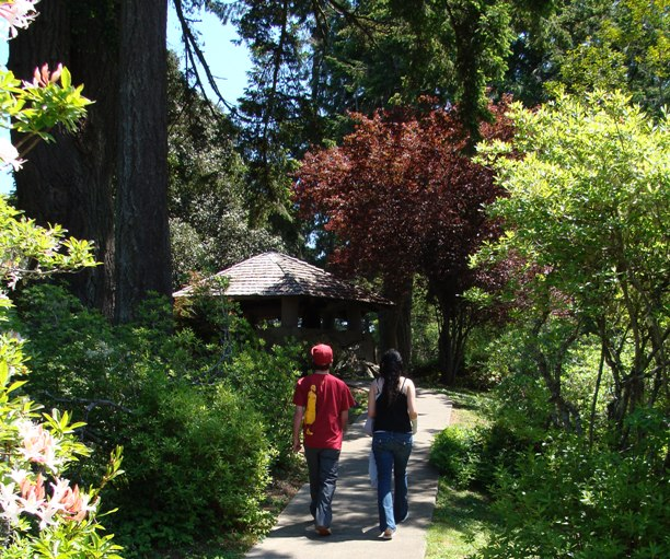 Photo of couple walking on path towards Gazebo at Azalea Park
