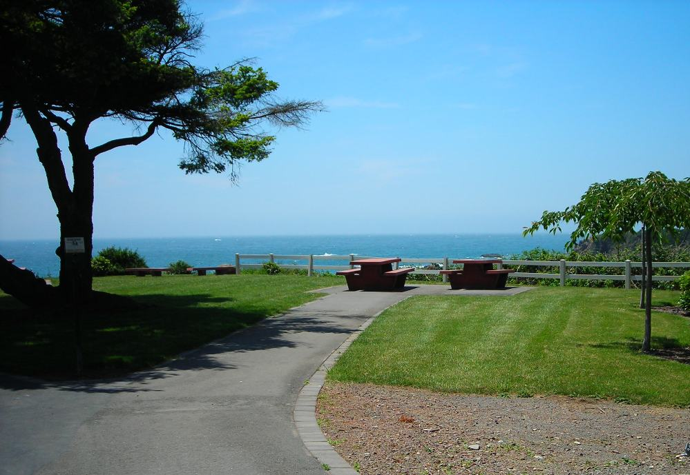 Photo of ChetcoPoint Park picnic area