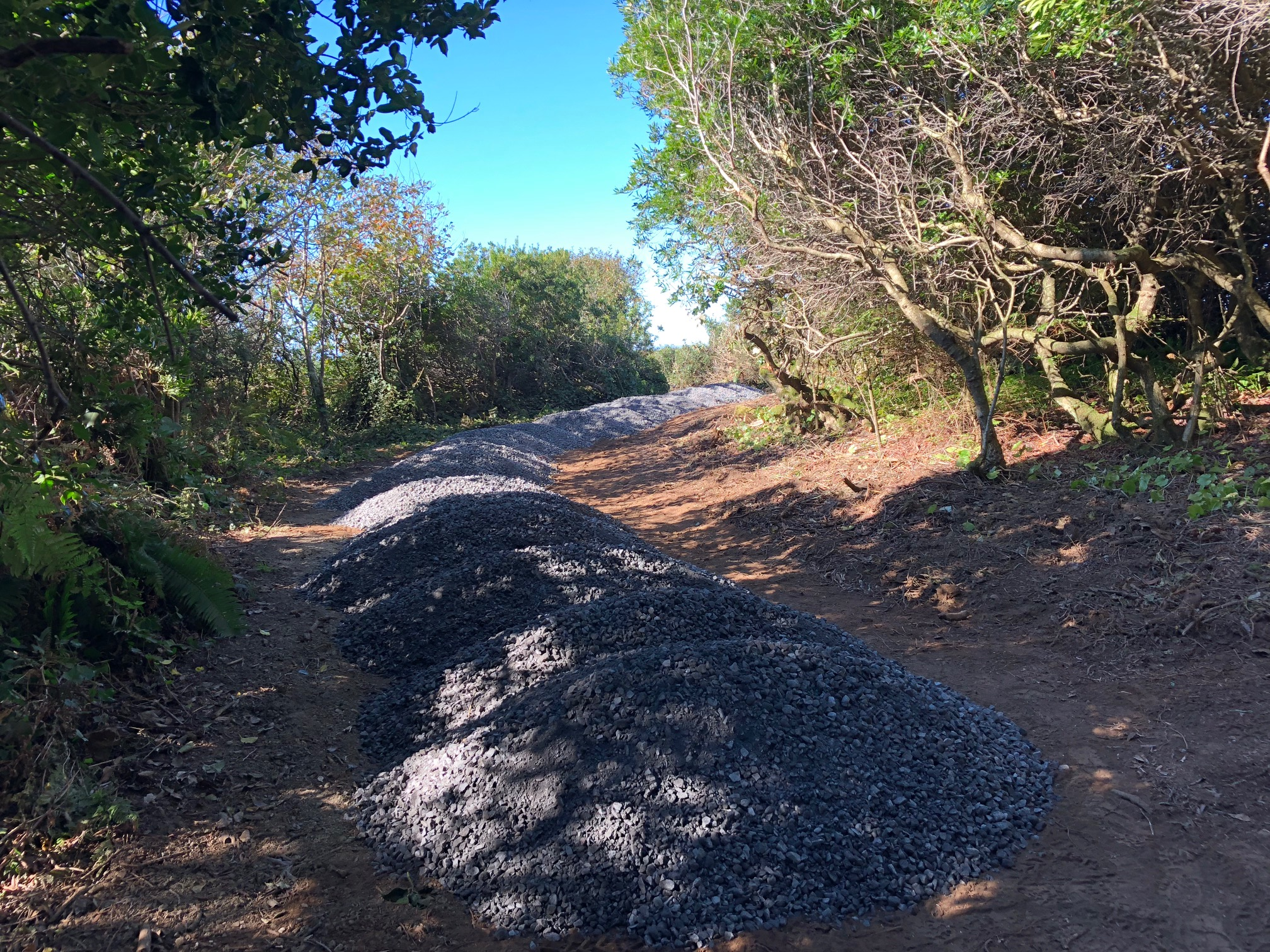 Chetco Point Trail Improvements
